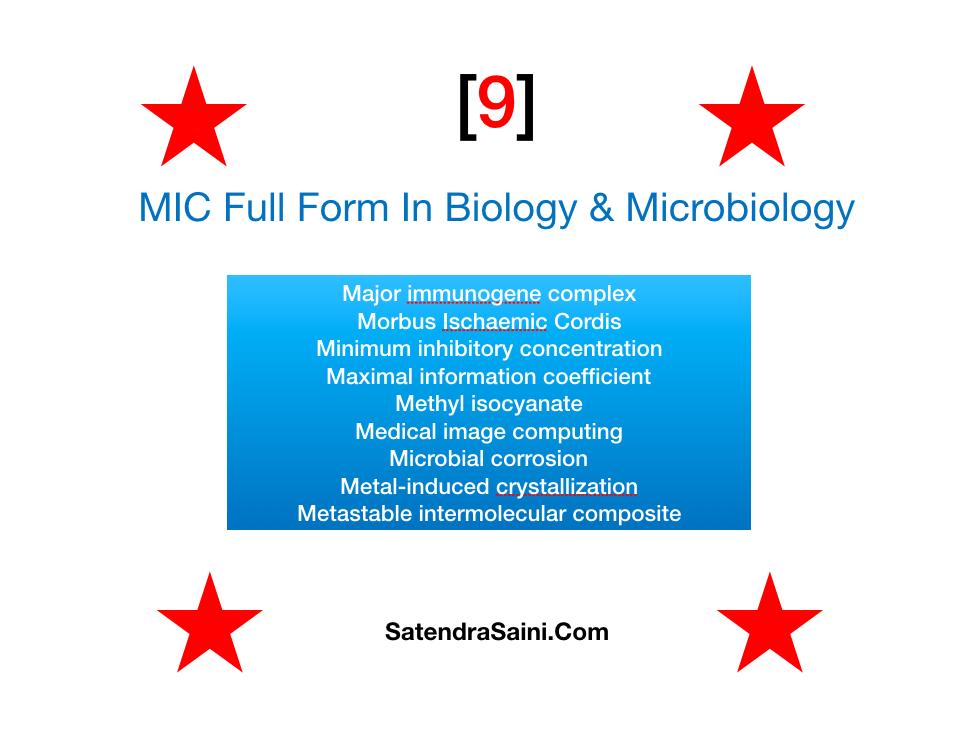 MIC Full Form