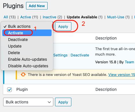 update WordPress plugin manually